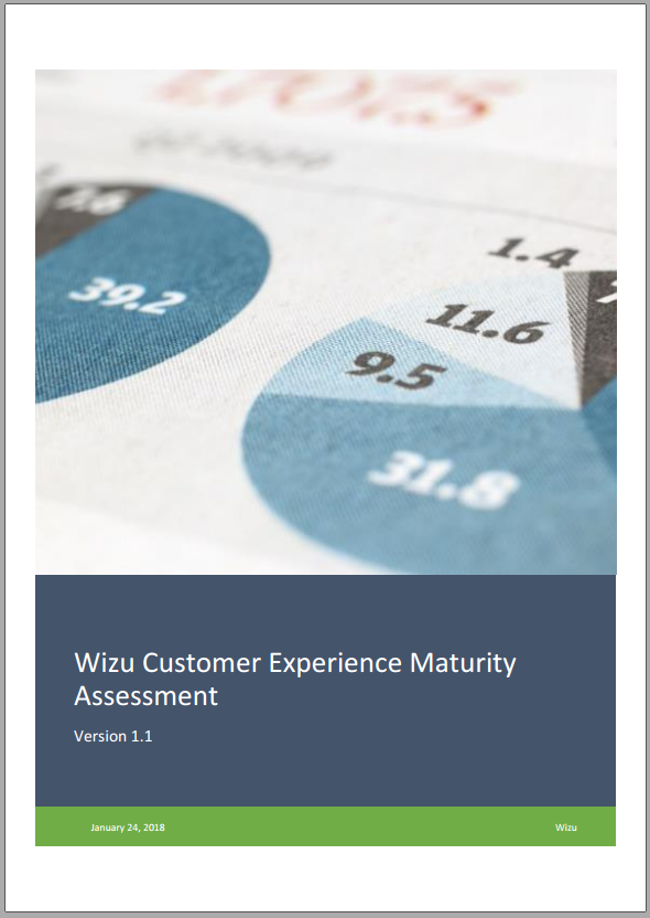 CX Maturity Assessment Cover Shot