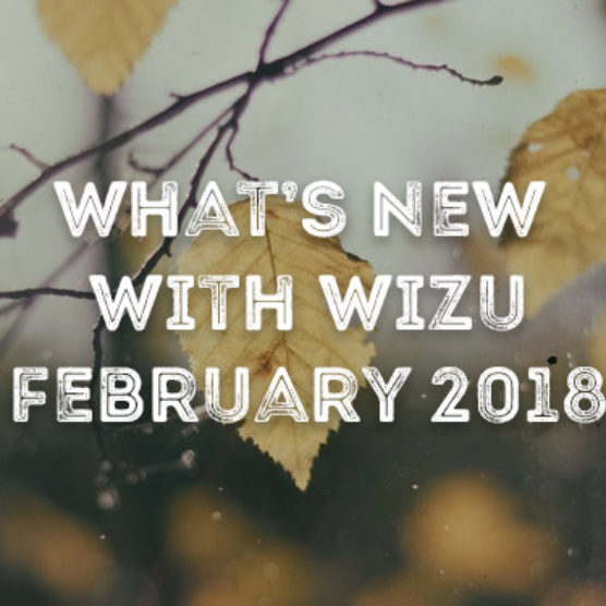 What's New With Wizu – February 2018
